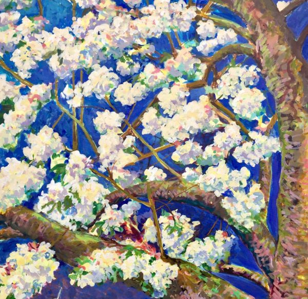 Blossom in Tixall. Acrylic on Canvas by Richard Bostock